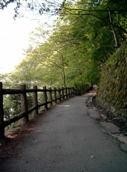 京都_嵐山_桂川沿い1