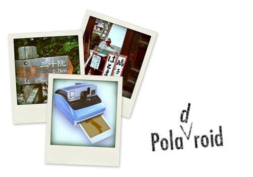 Poladroid01.jpg